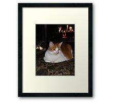 Molly Enjoying The Fireplace Framed Print