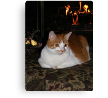 Molly Enjoying The Fireplace Canvas Print