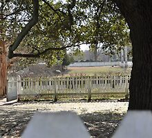 Dreamy Scene Behind White-Picket-Fence by Amber Williams