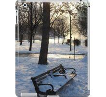 A Wintry Bench at Niagara Falls iPad Case/Skin