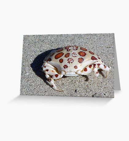 Spotted Crab Greeting Card