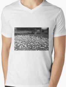 sea of tranquility Mens V-Neck T-Shirt
