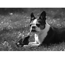 Luci at 9 Photographic Print