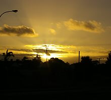 sunsetting  by janfoster