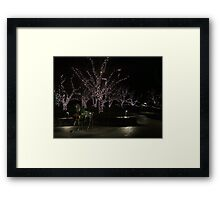 Branches of Light Framed Print