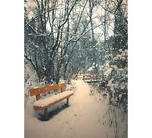 The Orange Bench Photographic Print