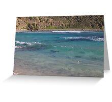 Ned's Beach, Lord Howe Island Greeting Card
