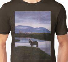a colourful Iceland landscape Unisex T-Shirt