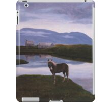a colourful Iceland