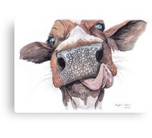 Cow Licking Lips Canvas Print