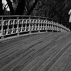 Central Park Bridge by Darren Gantt