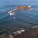 Shoreline by Bill  Russo
