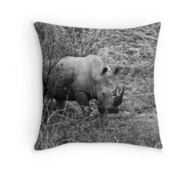 Rhino, Pilanesberg Park, South Africa Throw Pillow