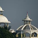 Incredible India - Temple domes at Mayapur by Shubhrajit Chatterjee