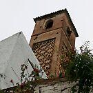 old minaret salares by Kent Tisher