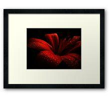 Ruby. Framed Print