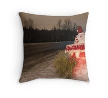 Back to Home ... Throw Pillow