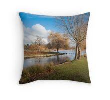 Bushey Park, Hampton Court, London. UK Throw Pillow