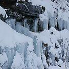 Still Winter, Winter Still 3 by BrittArnhild