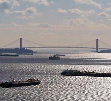 The Brooklyn Bridge by Dandelion Dilluvio
