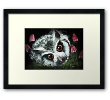 Owl & Horse Hair Mushrooms Framed Print