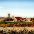 Amish Homestead by Polly Peacock