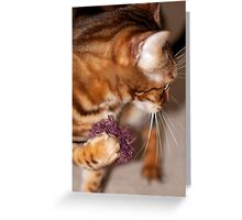 Diva powders her nose Greeting Card