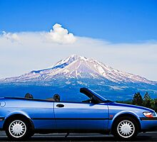 Saab and Shasta by Bryan D. Spellman