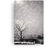 Snowstorm, Newcastle Canvas Print