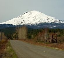 Mt. Adams by Bonnie Kirkpatrick