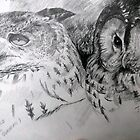 Sketch book owls by Robert David Gellion