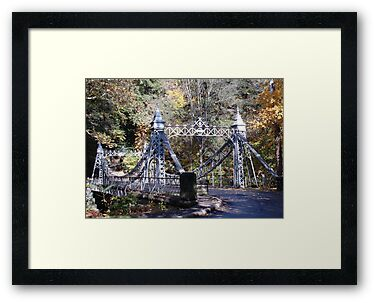 Cinderella Bridge by Monnie Ryan