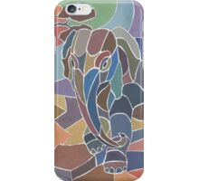 Kalahari iPhone Case/Skin