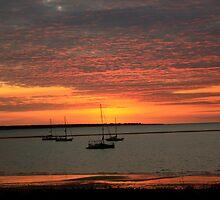 Cullen Bay Sunset, Darwin, Northern Territory by Robert Stephens