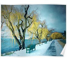 Lakeshore Walkway in Winter Poster