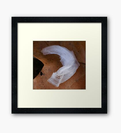 Ice Ribbon Framed Print
