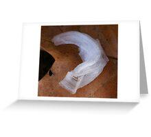 Ice Ribbon Greeting Card
