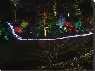Night in the Sunken Garden (7) by George Cousins