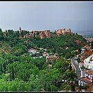 Granada. Vista panorámica desde el Sacromonte. by josemazcona