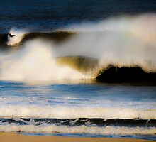 In the Wave by Mary Ann Reilly