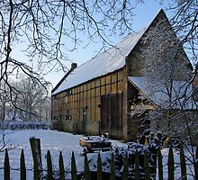 Bokrijk in the snow by Peter Zentjens