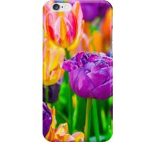 Tulips Enchanting 46 iPhone Case/Skin