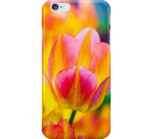 Tulips Enchanting 34 iPhone Case/Skin