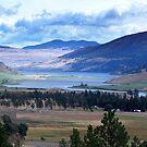 Lake and Nicola Valley by Jann Ashworth