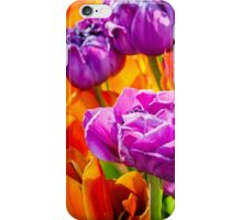 Tulips Enchanting 16 iPhone Case/Skin