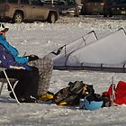 Sunbathing Canadian Style by John Beamish