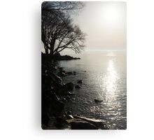 A Bright New Day Metal Print