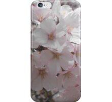 Cherry Bloom iPhone Case/Skin
