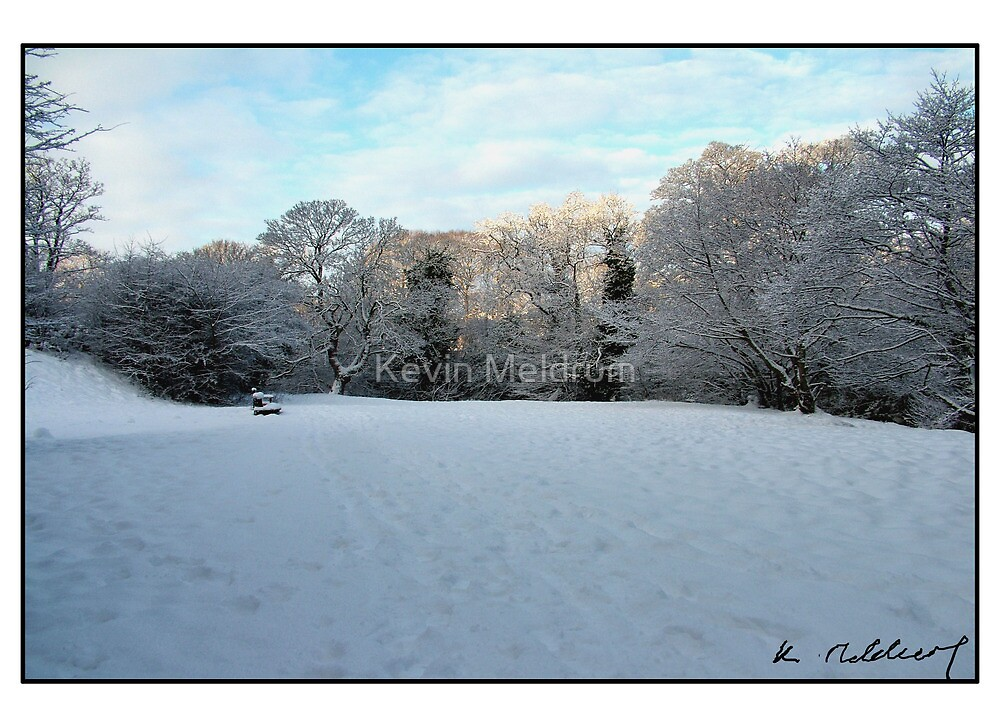 Snowy Park 2 by Kevin Meldrum