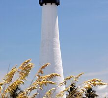 Cape Florida Lighthouse by ggpalms